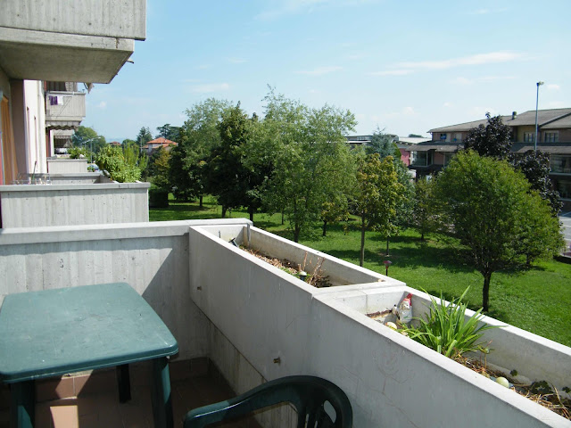 verde condominiale a protezione della palazzina dove si trova il trilocale in vendita, via aldo moro zanica