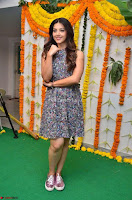 Actress Mehreen Kaur Latest 2017 Po Stills9 ~  Exclusive Celebrities Galleries.jpg