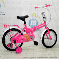 16 Inch Evergreen EG116 Princess Folding Bike