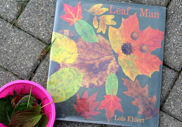 preschool leaf activity