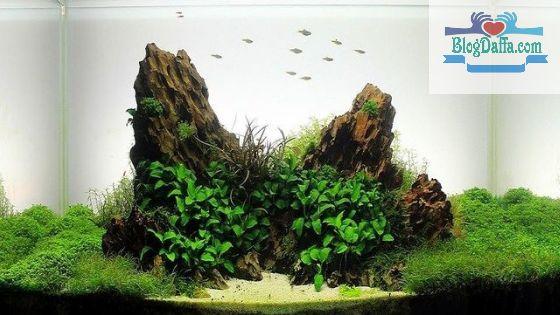 Batu Okho/Naga