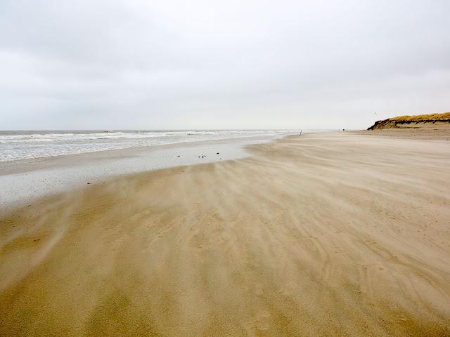 Langeoog, Nordsee, Strand, Wind, beach, Dünen