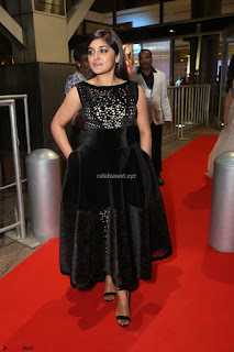 Niveda Thomas Black Sleeveless Cute Dress at 64th Jio Filmfare Awards South 2017 ~  Exclusive 099.JPG