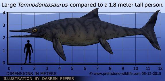 Απίστευτο: Ιχθυόσαυρος 152 εκατ. ετών ανακαλύφθηκε στην Ινδία