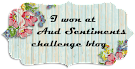 Winner Aud Sentiments challenge nº 204