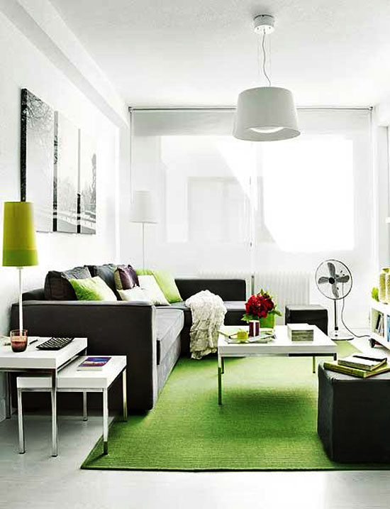 Small Apartment Interior Design