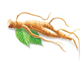 obat herbal gemuk badan, obat alami penggemuk, obat tradisional untuk gemuk badan, suplemen alami penggemuk