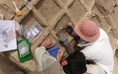 Αίγυπτος: Στο φως «ταφικός κήπος» ηλικίας 4.000 ετών