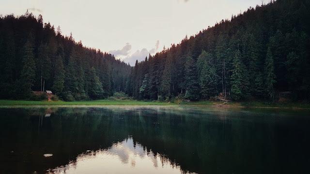Карпаты, Украина, Синевир, путешествия, поездки, отпуск, природа, пейзаж, Ukraine, Carpathians, landscape, nature, travel, journey, горы, mountains, лес, озеро, lake