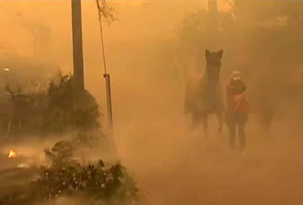 Elevan la cifra de muertos a tres, incendio Galicia