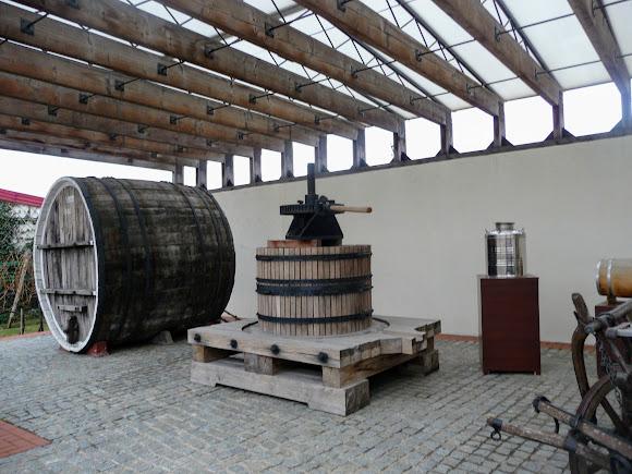 Шабо. Центр культуры вина. Экспозиция в открытом павильоне