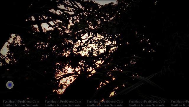 FeelHappyFeelGood Photography~11 Eleven ~