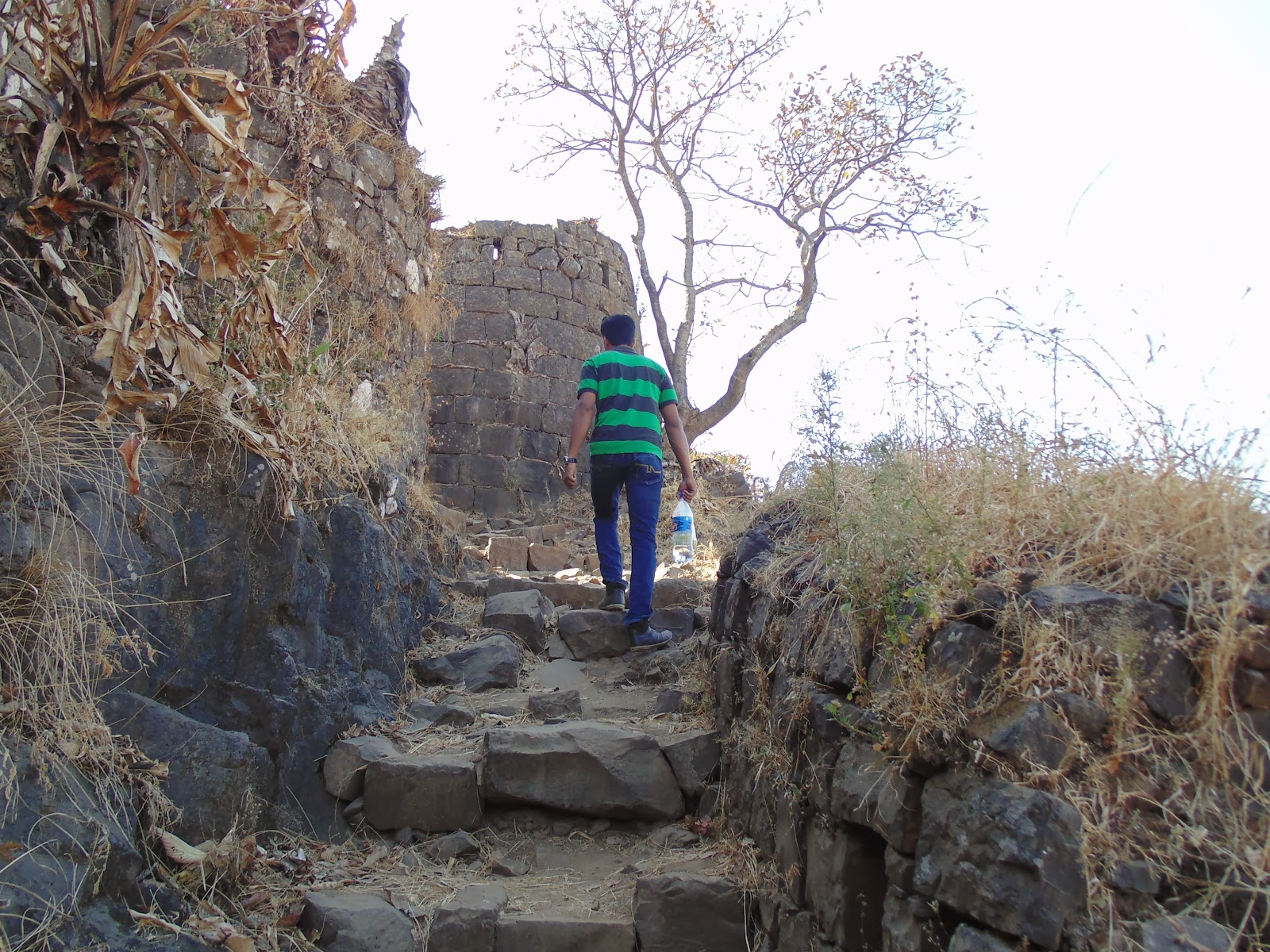Tikona fort around pune