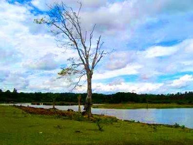 Danau Aek Natonang