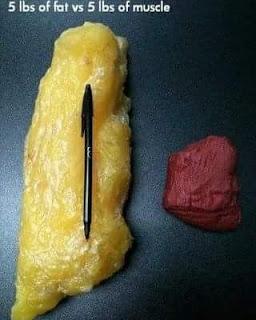 Tahukah kenapa perempuan dah kurus tapi nak kurus lagi? Sebab lemak.