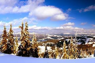 Карпатские горы сочинение