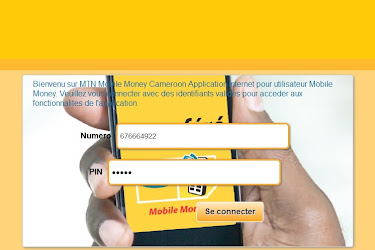 How To Use Mtn Mobile Money Online Cameroon Web Login