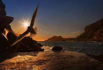 La libertà a rischio #passeggiandoneilibri