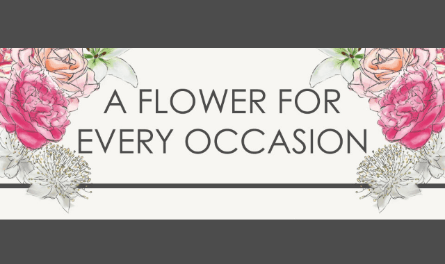 A Flower For Every Occasion