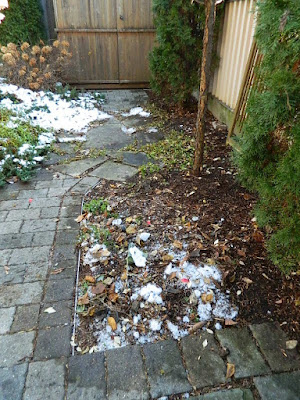 Toronto St. Clair West Village Fall Backyard Cleanup After by Paul Jung Gardening Services--a Toronto Organic Gardening Company