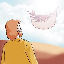 transfiguração,moises e elias,monte da transfiguração,jesus anda sobre o mar