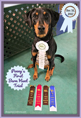 doberman barn hunt dog rescue canine sports ribbons high in class