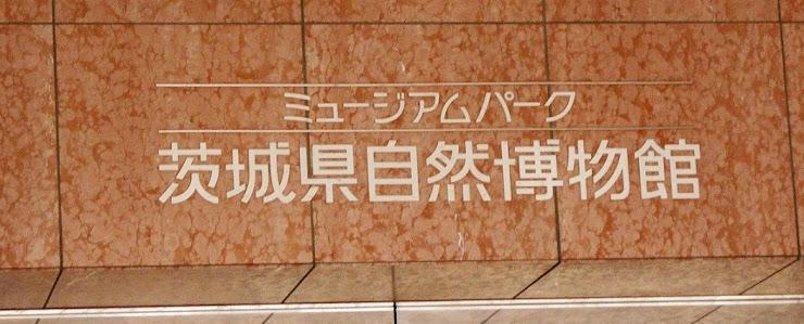 茨城県自然博物館の表示