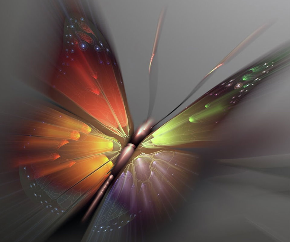 Android Phones Wallpapers: Android Wallpaper Butterfly