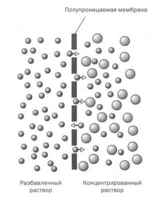 Осмос в процессе очистки воды