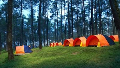 Camping Ground Grafika Cikole Bandung