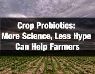 Crop probiotics