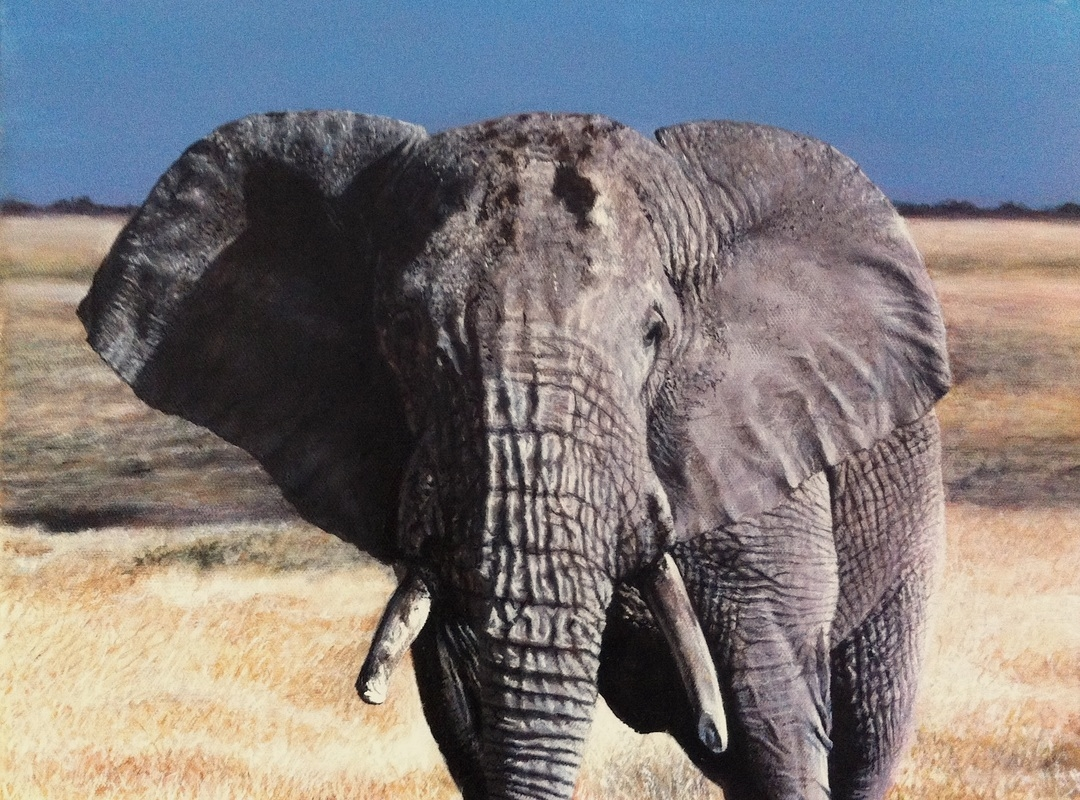06-Elephant-Nick-Sider-Realistic-Animal-Paintings-more-than-a-Photo-Image-www-designstack-co