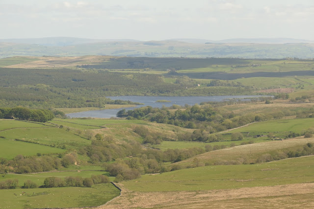A rolling landscape of fields and trees surrounding the blue waters of a large reservoir.