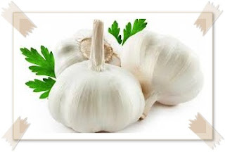 In Republic of Indonesia equally good equally inward all corners of the basis garlic is rattling famous  8 Benefits of Garlic for Health