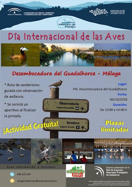 Día Internacional de las Aves en la Desembocadura del Guadalhorce