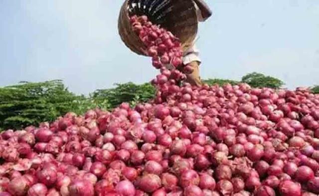 किसान भाई प्याज विक्रय के लिए ई-उपार्जन पोर्टल पर 31 मई तक पंजीयन कराए | SHIVPURI NEWS