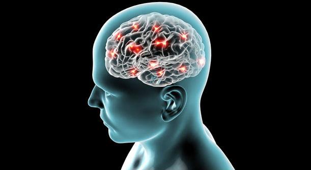 Sayuran Yang Bisa Remajakan Otak