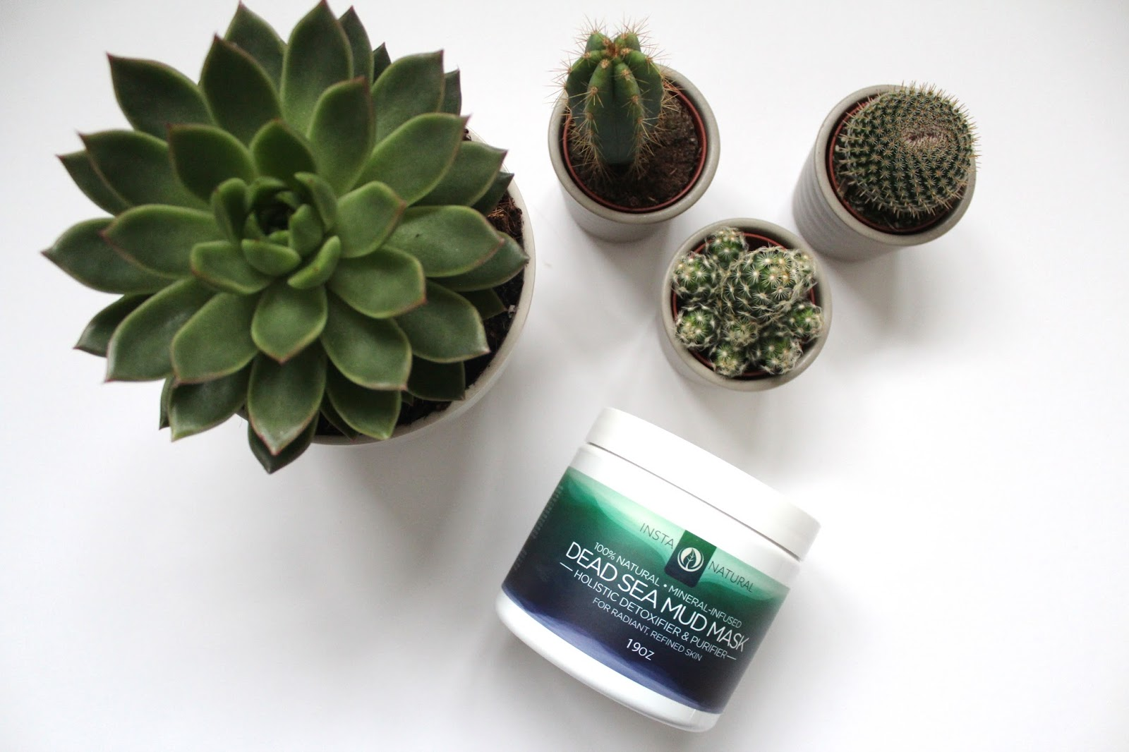 bblogger bbloggers beauty skincare instanatural dead sea mud mask face mask natural ingredients skin amazing cactus review sample kirstie pickering succulent