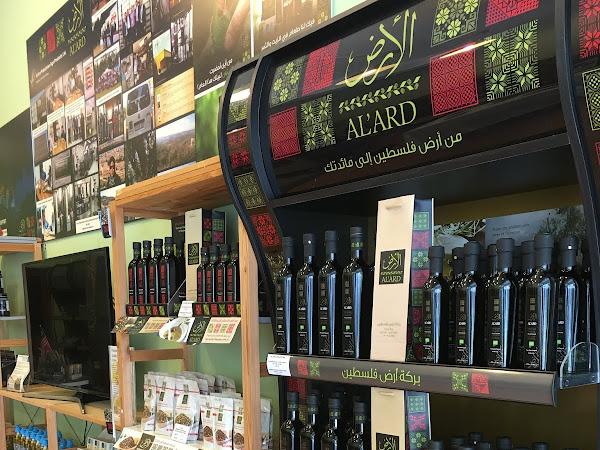 Al' Ard minyak zaitun dari pokok tertua mencecah usia 500 tahun - Al Masoud Trading