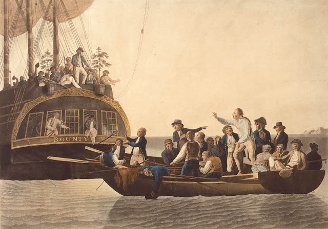 Forensic analysis of pigtails to help identify original 'mutineers of H.M.S. Bounty'