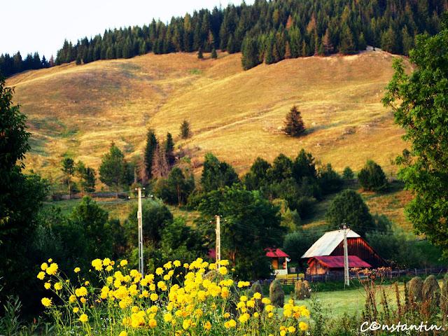 Puţin cate puţin acalmia cuprinde peisajul - blog Foto-Ideea
