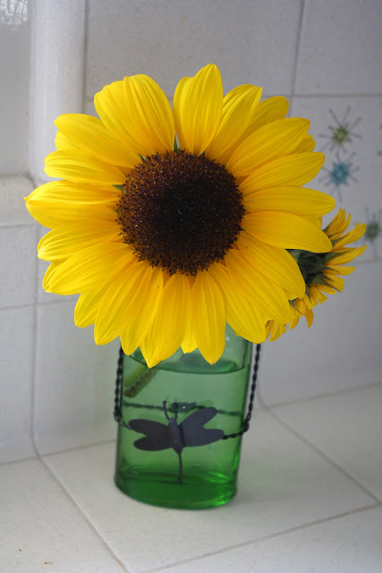 Sunny Simple Life Make Cut Sunflowers Last Longer