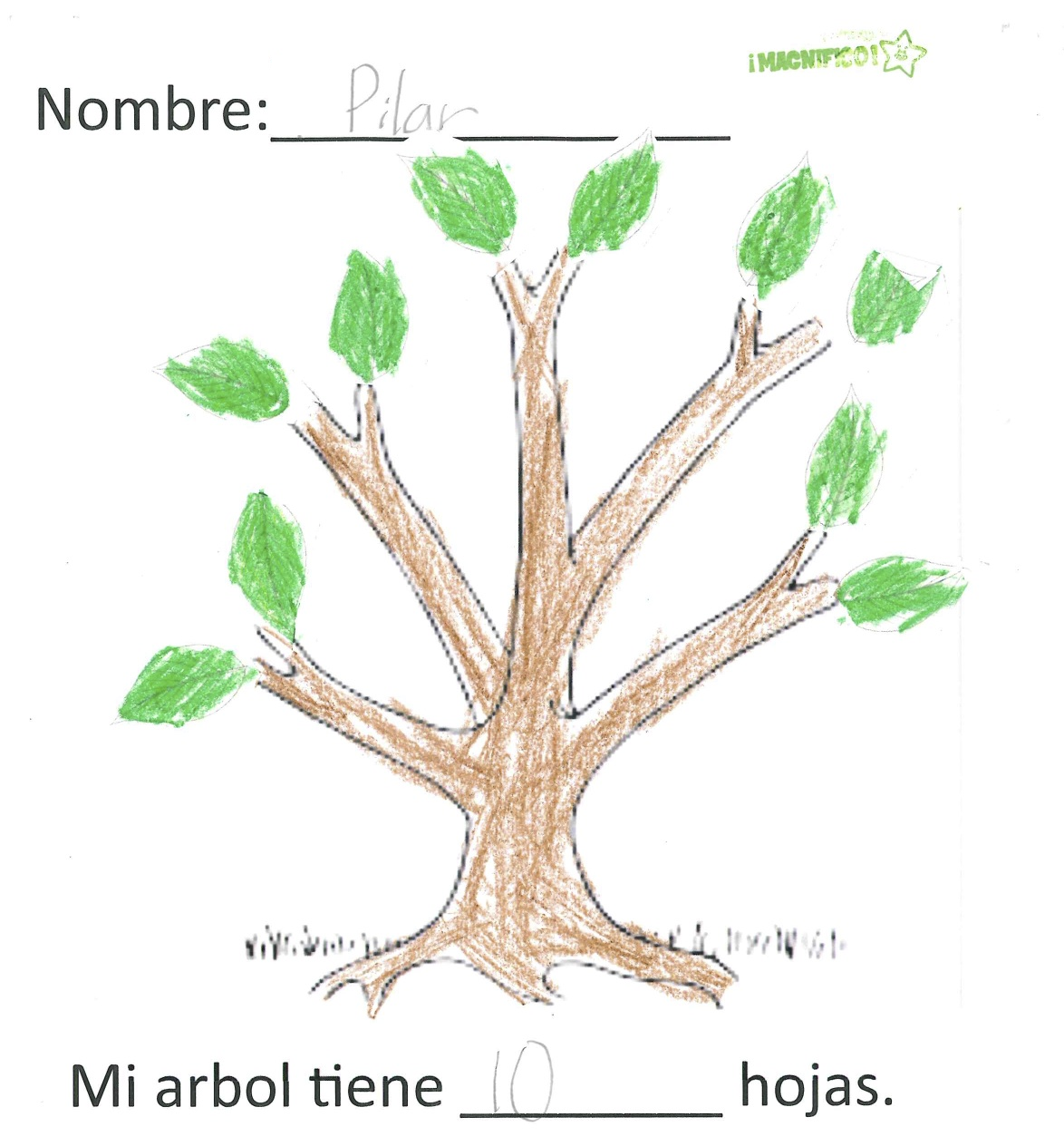 Spanish Simply Parts Of A Tree In Spanish