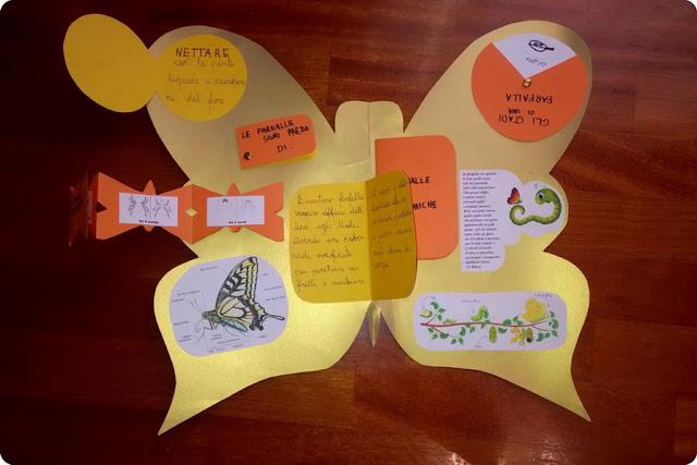 homescooling e lapbook farfalle