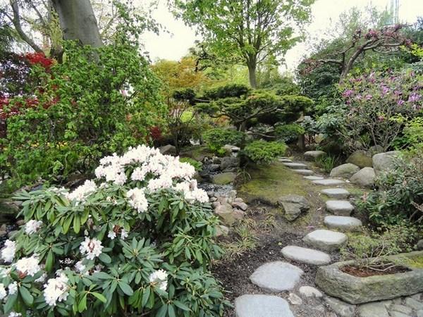 Garden Paths A Striking Radiance
