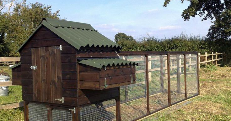 The Best Way To Make Sure Your Do-It-Yourself Chicken Coop -5141