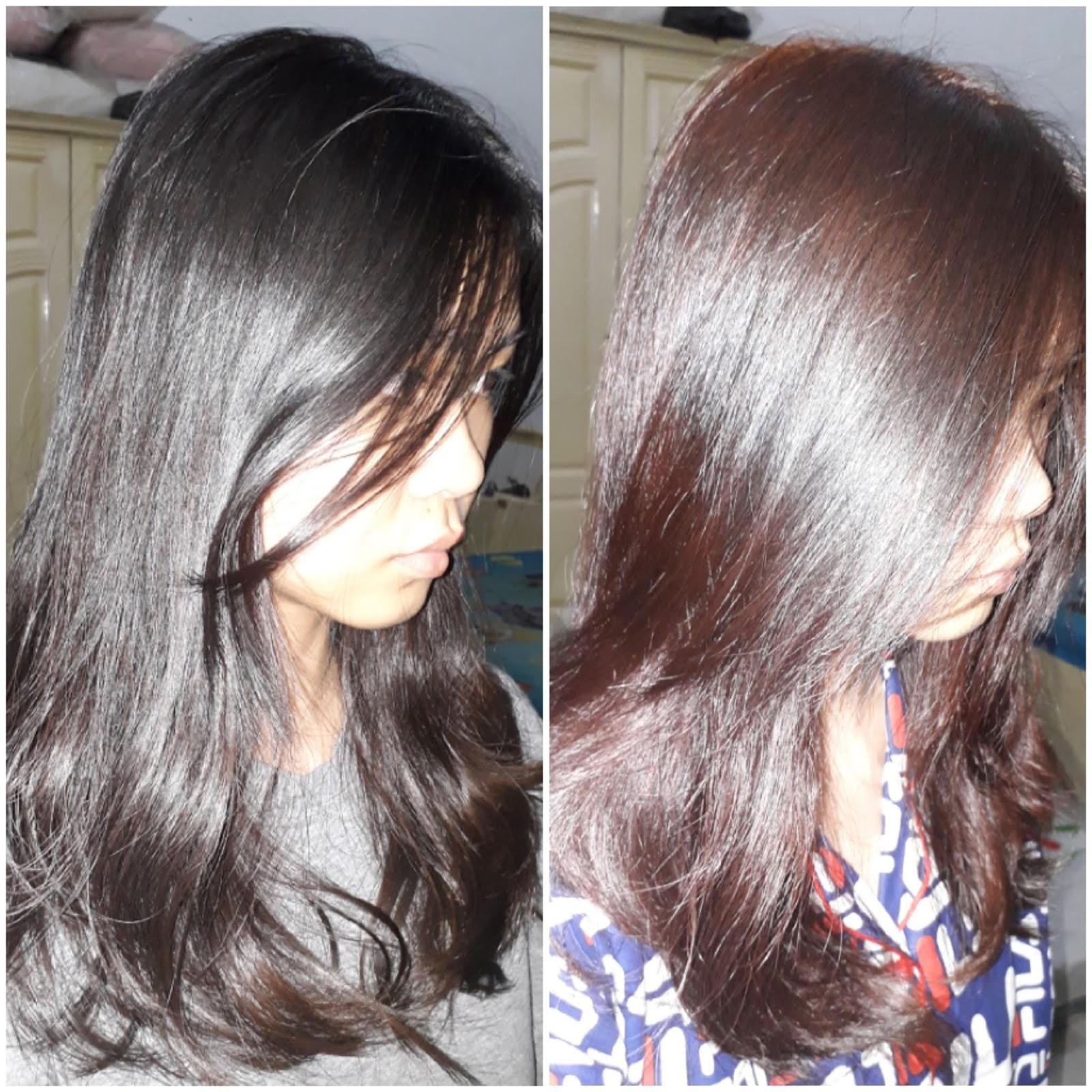 Beautylabo Guardian: ~christalialie~: Beautylabo Hair Color (Candy Apricot) Review