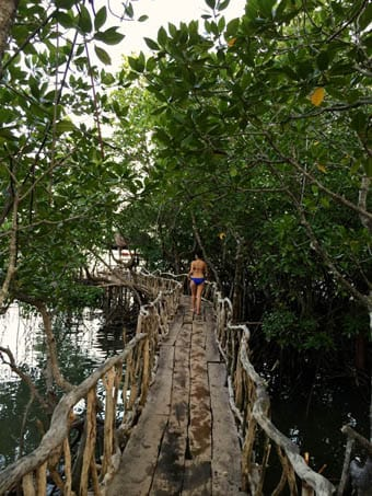 Walking at Coron Bridge