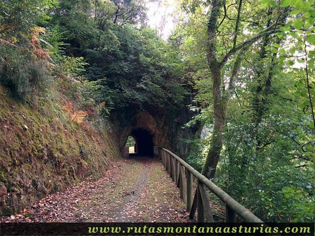 Ruta de Priañes: Túnel vista una vez pasado