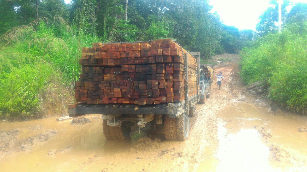 Perubahan Peraturan Pengangkutan Kayu Hutan Hak Dengan Nota